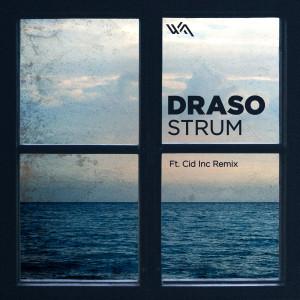 Draso – Strum
